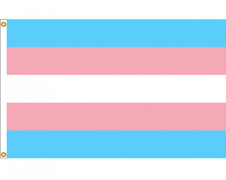Transgender Pride Helms Flag