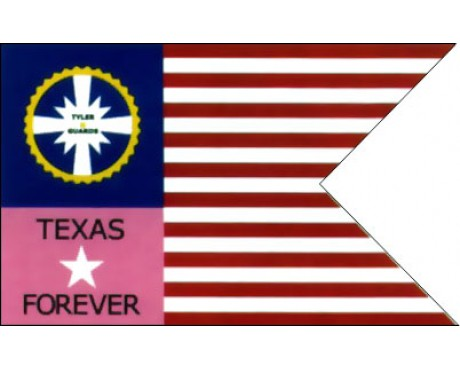 Tylers Guard Texas Guidon Flag - 3x5'
