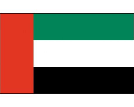 United Arab Emirate Flag