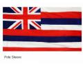 Hawaii Sleeve