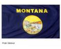 Montana Sleeve