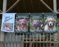 Dog banners hanging from the porch railing
