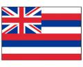 Hawaii Flag - Outdoor