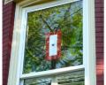 Service Star Banner (1 Blue Star) in window