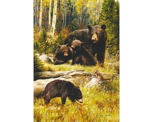 Bear Cubs Flag