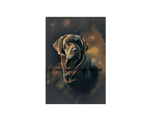 Chocolate Labrador Flag