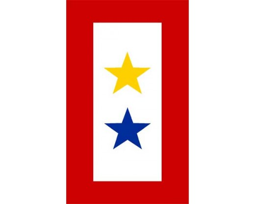 Service Star Magnet (2 Stars, Gold/Blue)