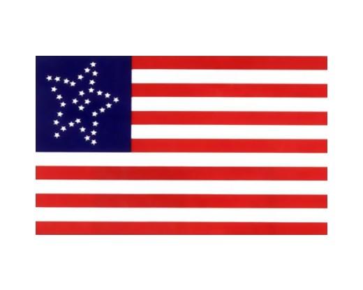 34 Star Great Flower US Civilian Flag - 3x5'