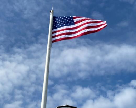 Steadfast Winter Flag