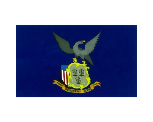 3rd CT Infantry Regiment Flag - 3x5'