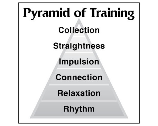Pyramid of Training Banner - 6x6'