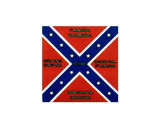 8th Virginia Leesburg Flag 1864 - 4x4'