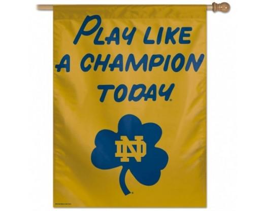 Notre Dame Banner