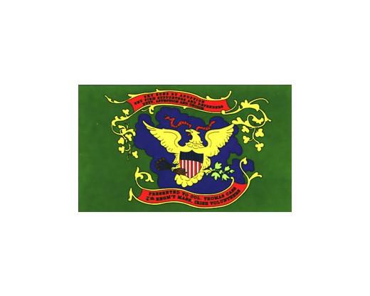 9th MA Irish Brigade Regiment Flag - 3x5'