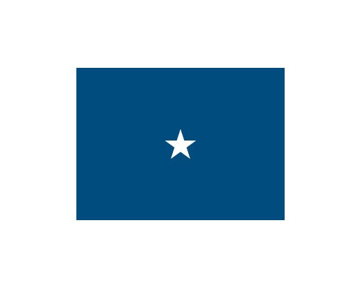 Air Force Brigadier General Flag (1 Star) - 3x5'