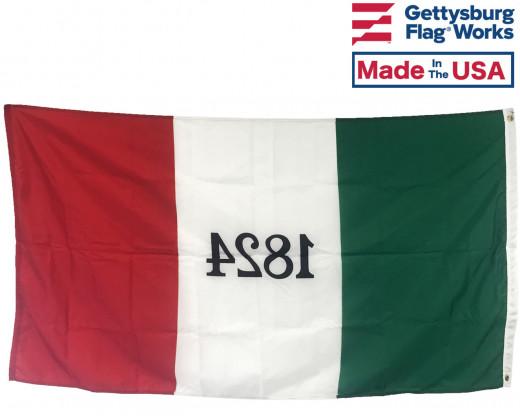 Alamo Flag Back