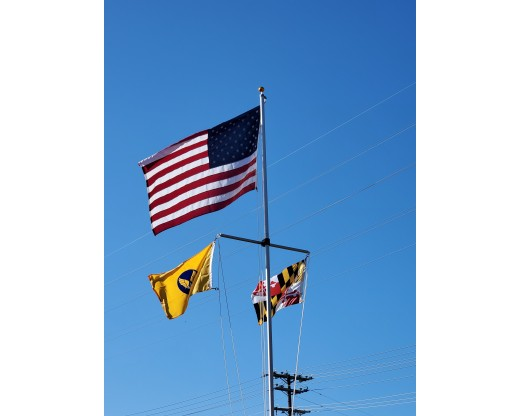 American and Maryland State Flag