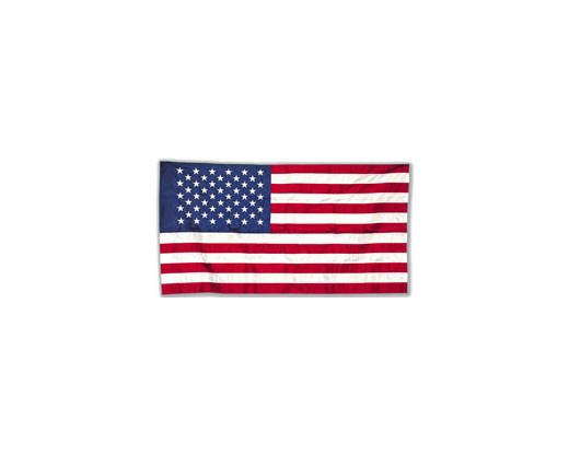 All-Weather Nylon American Flag with sleeve