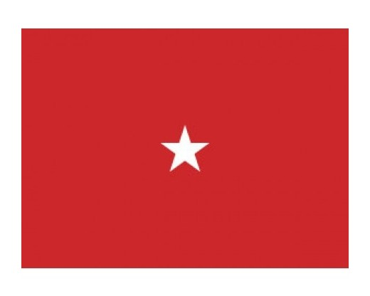 Army Brigadier General (1 Star) - Army Officer Outdoor Flags