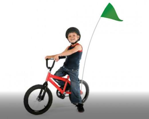 Bike Flag Set Grass Green