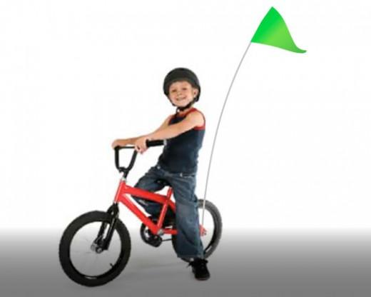 Bike Flag Set Green