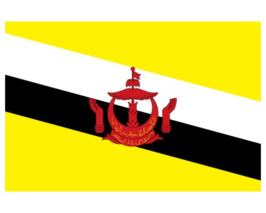 Brunei Flag - 2x3' - Indoor