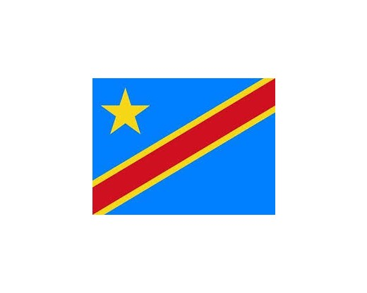 Congo Democratic Republic Stick Flag (Historical, Lt Blue) 4x6""