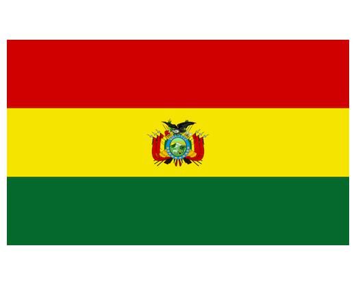 Bolivia Flag Bolivia Flags South America Flags