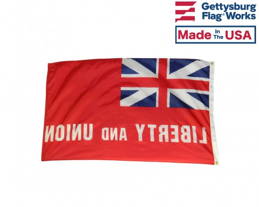 Taunton Flag back