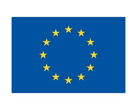 """Vaizdo rezultatas pagal užklausą """"europe flag"""""""