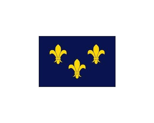 Fleur-De-Lis Flag (blue-3) - 3x5'