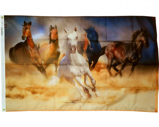 Running Horses Flag Photo