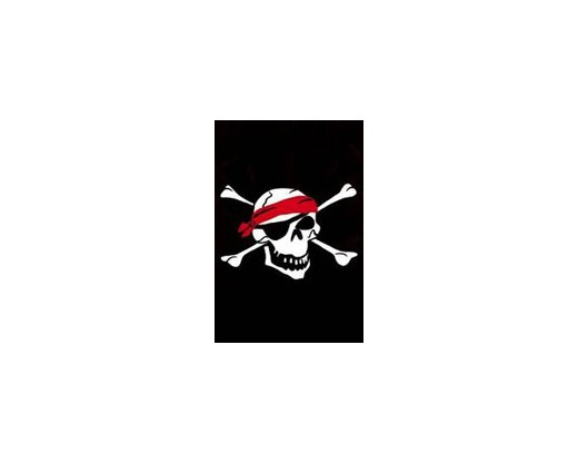 Pirate House Banner
