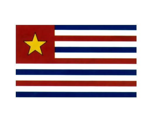 LA Gold Star Flag - 3x5'