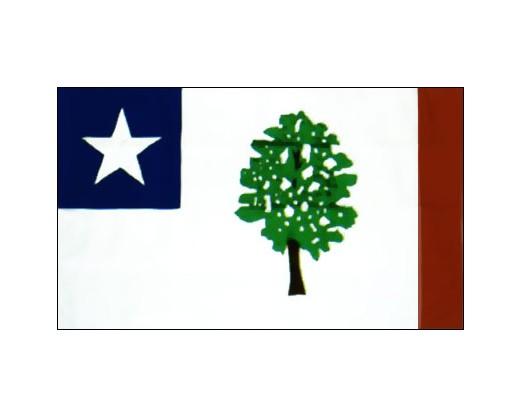 Mississippi Flag 1861 - 3x5'