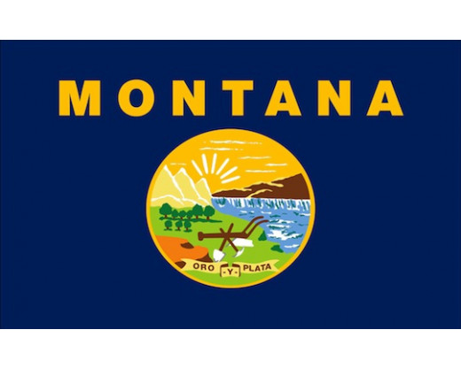 Montana Flag - Outdoor