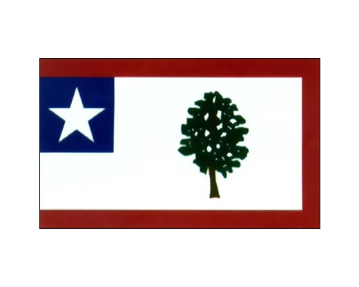 MS State Flag - 3x5'