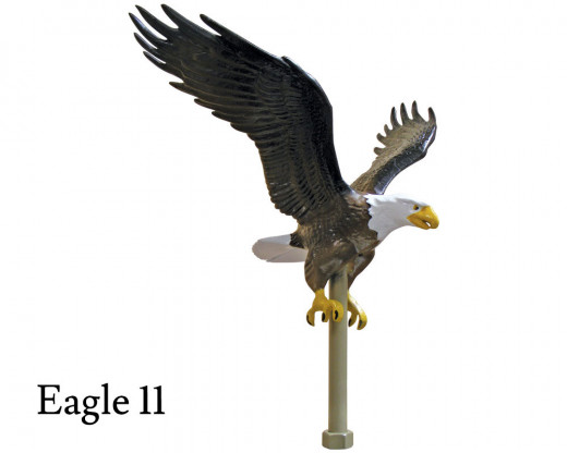Flying Eagle 11, Natural Aluminum