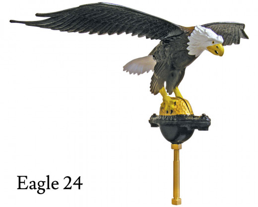 Flying Eagle 24, Natural Aluminum