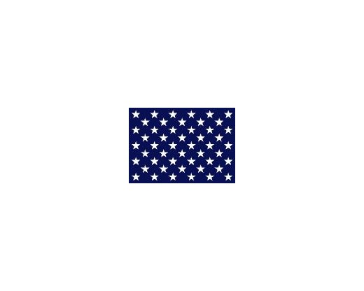 Navy Jack US Flag