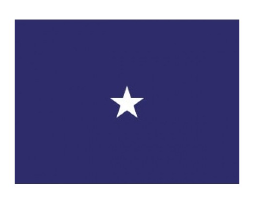 Navy Commodore (1 Star)