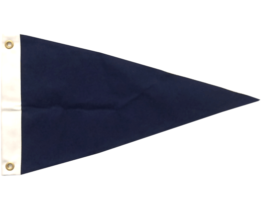 OG Blue Poly Pennant