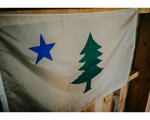 original maine flag side view