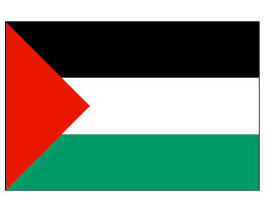 palestine flag palestine flags asia flags country flags
