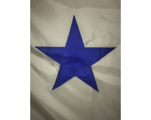 original maine flag star