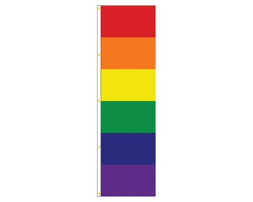 Rainbow Banner (Fat Stripes)
