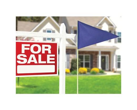 Real Estate Flag Set