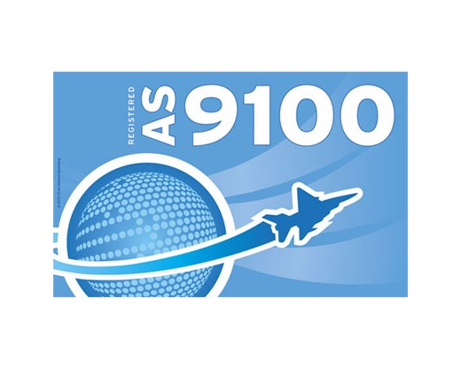 AS 9100  Flags & Banners