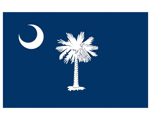 South Carolina Reflective Sticker