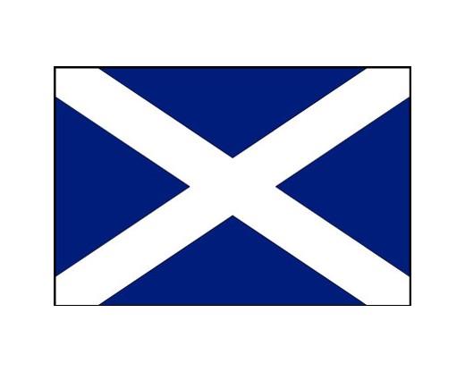 Scotland Flag (With Cross) - 4x6'